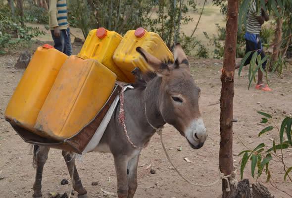 aiutare pozzi acqua etiopia